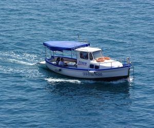 Морская прогулка/Рыбалка